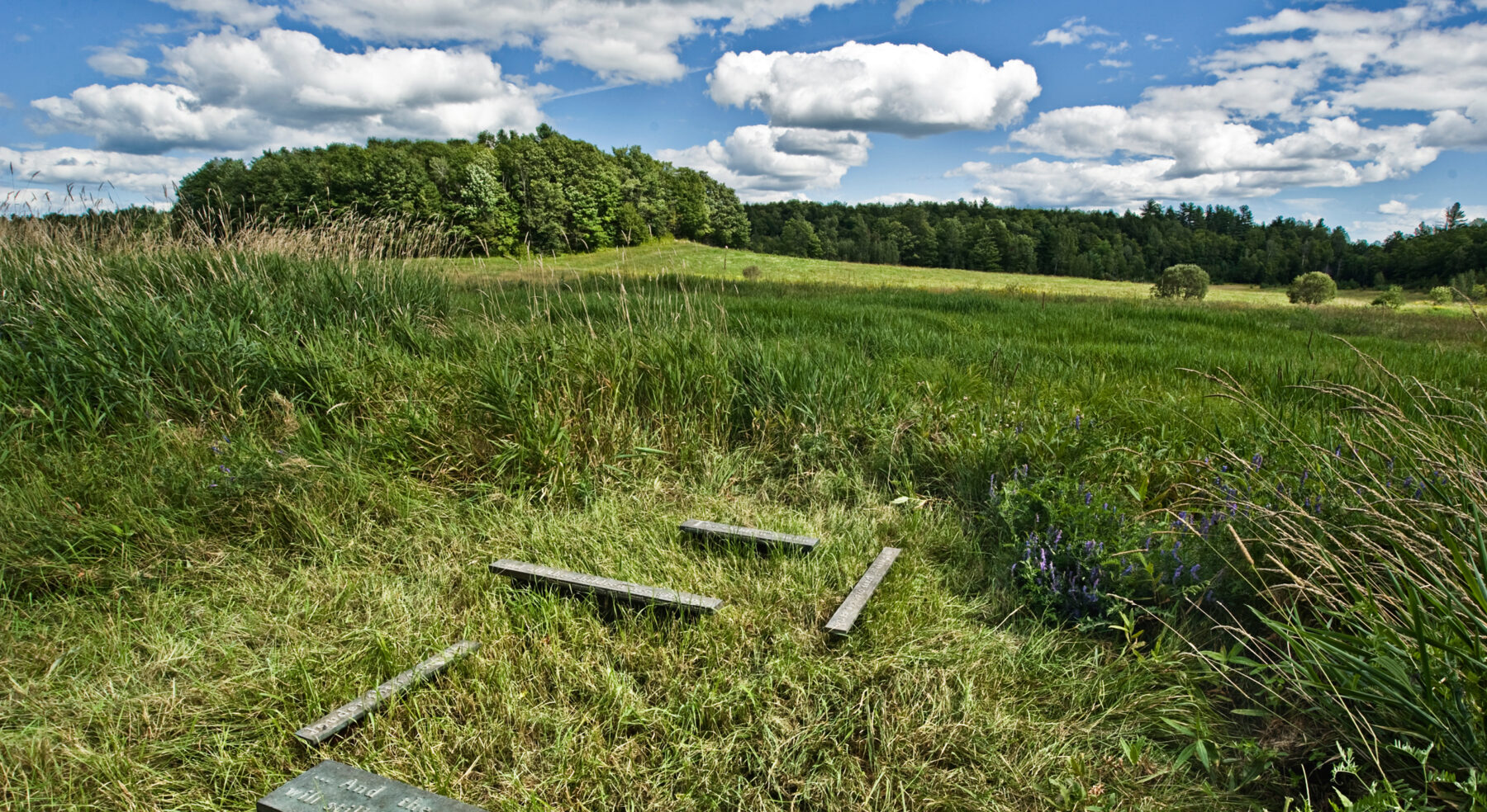 Wide-view of Cemetery Markers in field
